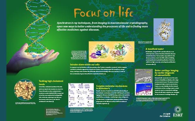 ESRF - panneaux de présentation - Life Science